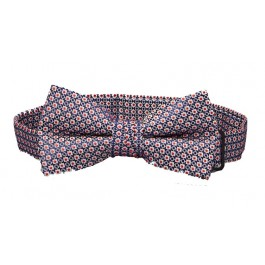 Blue & Red Pattern Boys Bow Ties
