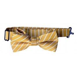 Gold with White Stripe Boys Bow Tie