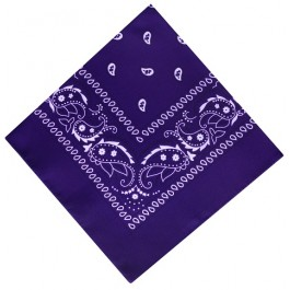 Purple Paisley Boys Bandana